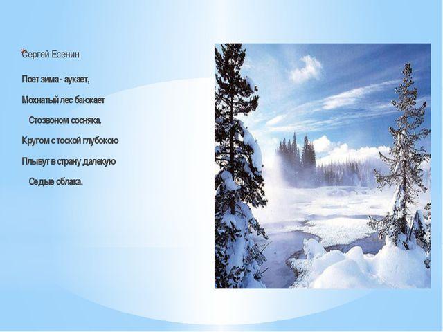 Сергей Есенин Поет зима - аукает, Мохнатый лес баюкает Стозвоном сосняка. Кр...