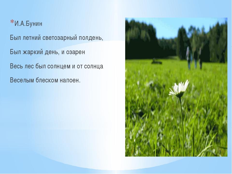 И.А.Бунин Был летний светозарный полдень, Был жаркий день, и озарен Весь лес...