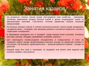 Занятия казаков На незанятых степных землях казаки обустраивали свои хозяйств