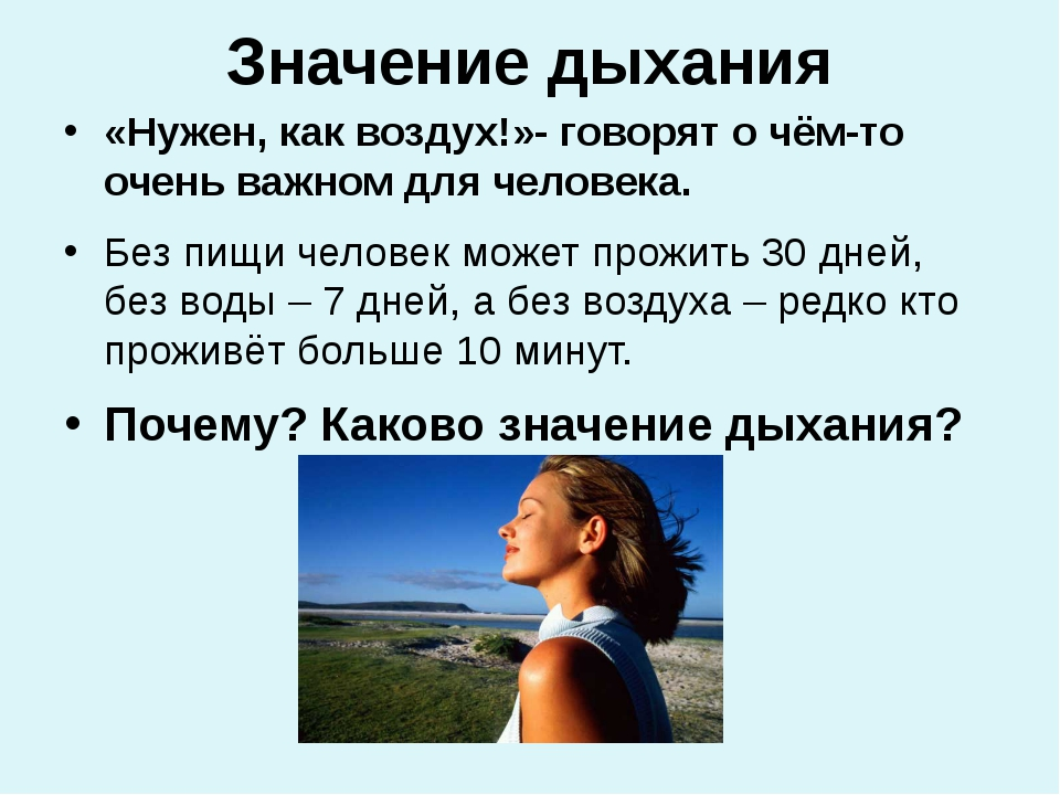 Значение дыхания «Нужен, как воздух!»- говорят о чём-то очень важном для чело...