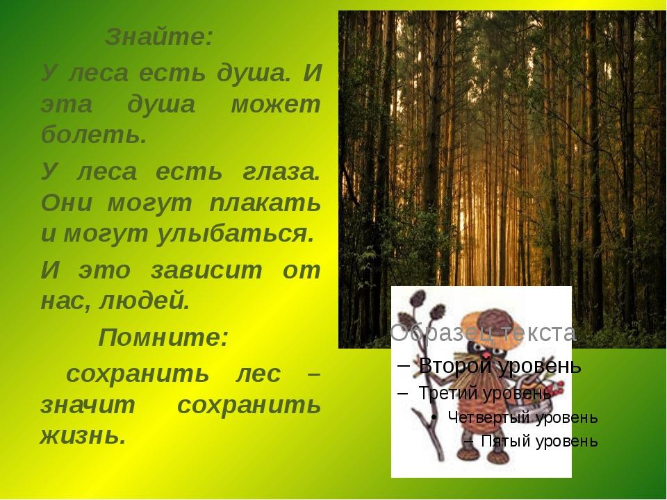 Знайте: У леса есть душа. И эта душа может болеть. У леса есть глаза. Они мо...