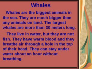 Whales Whales are the biggest animals in the sea. They are much bigger than