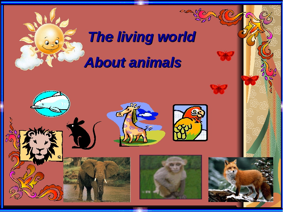 The living world About animals
