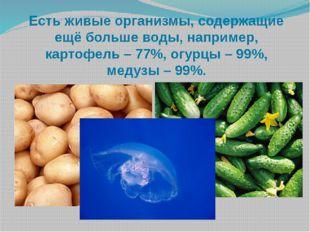 Есть живые организмы, содержащие ещё больше воды, например, картофель – 77%,