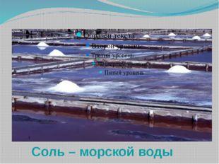 Соль – морской воды