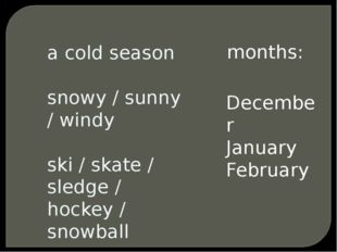 a cold season snowy / sunny / windy ski / skate / sledge / hockey / snowball