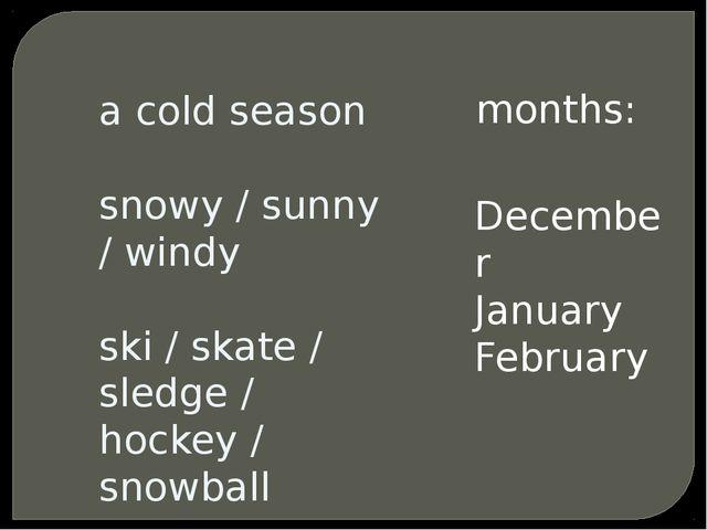 a cold season snowy / sunny / windy ski / skate / sledge / hockey / snowball...