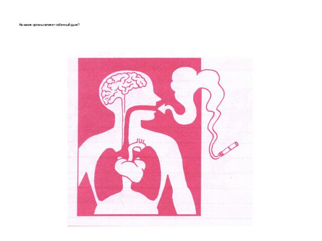 На какие органы влияет табачный дым?
