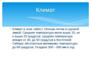 Климат в зоне тайги с тёплым летом и суровой зимой. Средняя температура июля