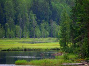 Дерново – подзолистая почва. Испаряемость 545 мм. Увлажнённость достаточная 1
