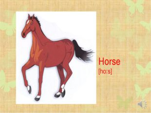 Horse [ho:s]