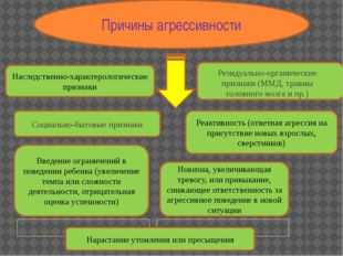 Причины агрессивности Наследственно-характерологические признаки Резидуально