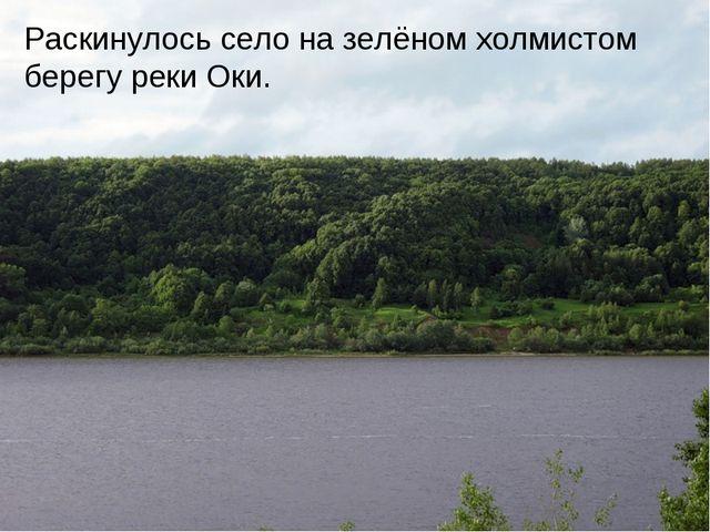 Раскинулось село на зелёном холмистом берегу реки Оки.