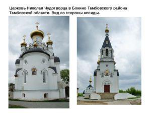Церковь Николая Чудотворца в Бокино Тамбовского района Тамбовской области. Ви