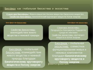 Биосфера как глобальная биосистема и экосистема - оболочка Земли, состав, стр