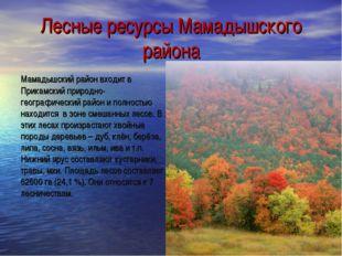 Лесные ресурсы Мамадышского района Мамадышский район входит в Прикамский прир