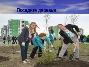 Посадите деревья !