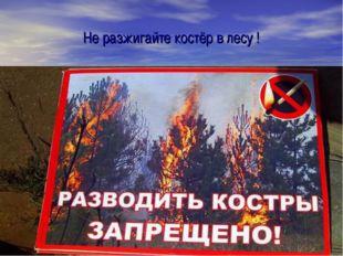 Не разжигайте костёр в лесу !