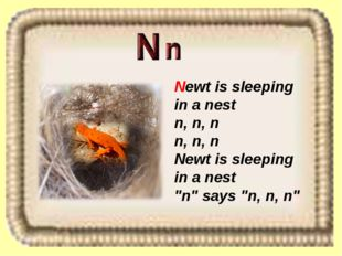 "Newt is sleeping in a nest n, n, n n, n, n Newt is sleeping in a nest ""n"" say"