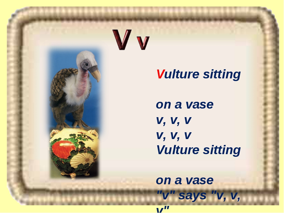 "Vulture sitting on a vase v, v, v v, v, v Vulture sitting on a vase ""v"" says..."