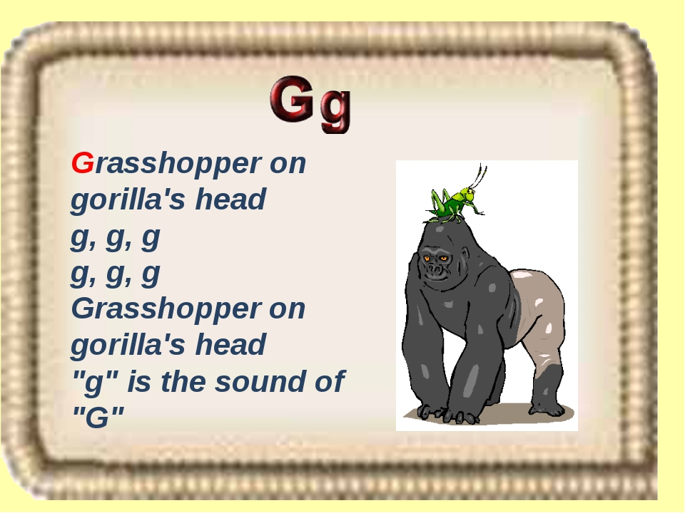 "Grasshopper on gorilla's head g, g, g g, g, g Grasshopper on gorilla's head ""..."