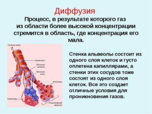 Диффузия Процесс, в результате которого газ из области более высокой концентр