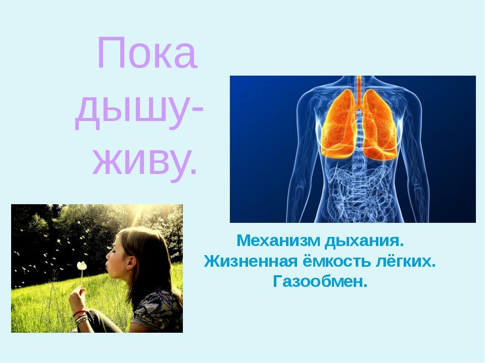 Механизм дыхания. Жизненная ёмкость лёгких. Газообмен. Пока дышу- живу.