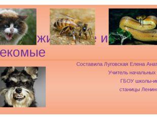 1 www.Sussex.ac.uk 2 www.mobilmusik.ru 3 catfoto.com 4 neobychno.com