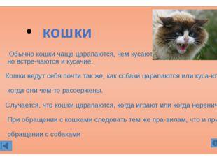 Обычно кошки чаще царапаются, чем кусаются, но встречаются и кусачие. Кошки