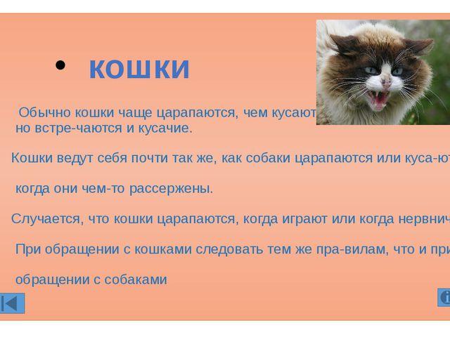 Обычно кошки чаще царапаются, чем кусаются, но встречаются и кусачие. Кошки...