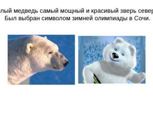 Белый медведь самый мощный и красивый зверь севера. Был выбран символом зимне