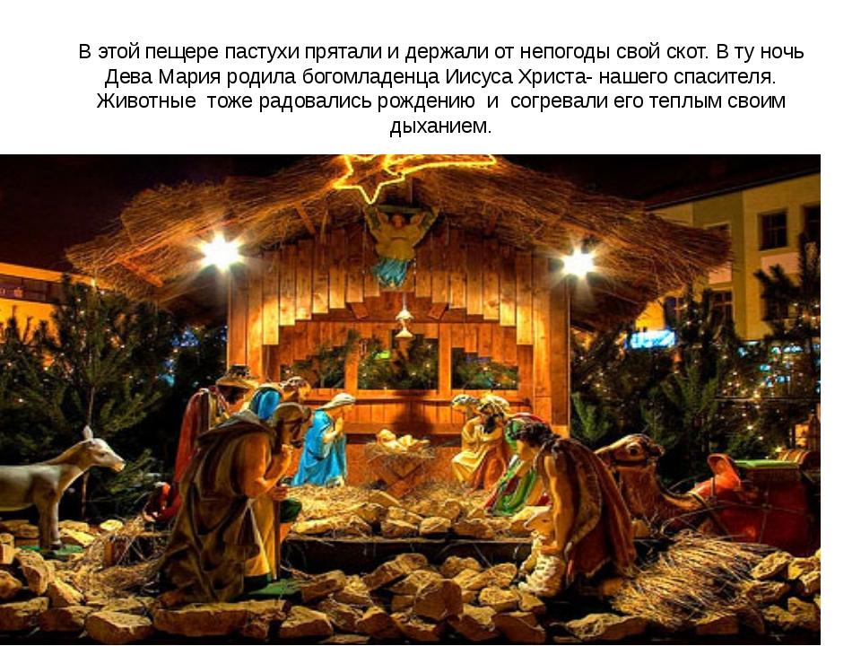 В этой пещере пастухи прятали и держали от непогоды свой скот. В ту ночь Дева...