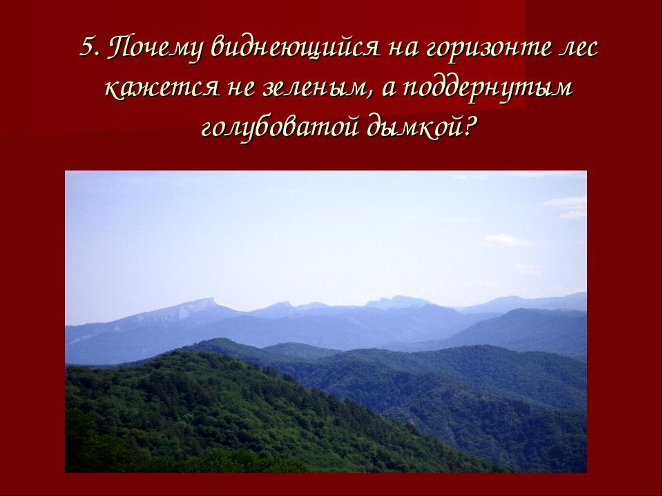 5. Почему виднеющийся на горизонте лес кажется не зеленым, а поддернутым голу...