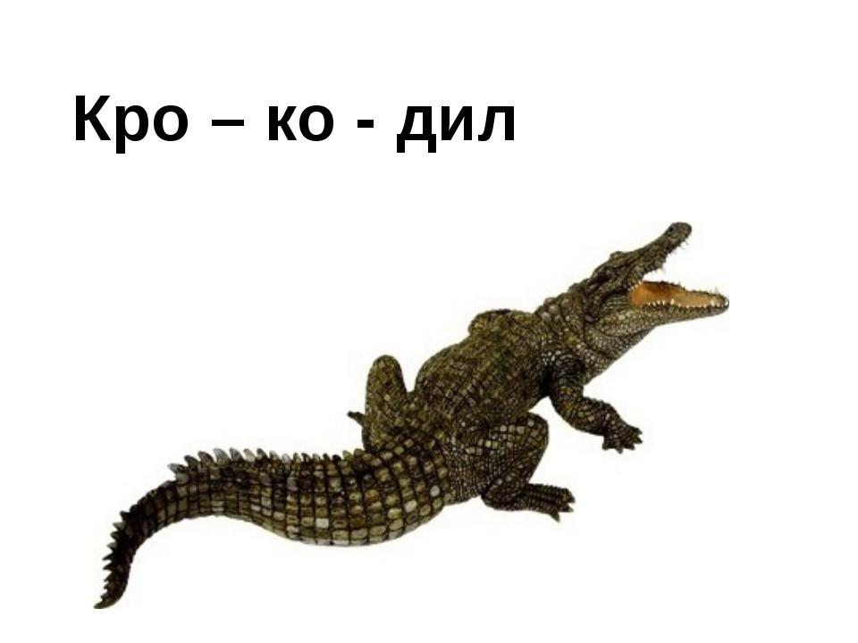 Кро – ко - дил