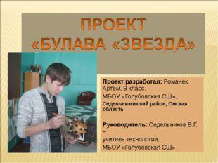 Проект разработал: Романек Артём, 9 класс, МБОУ «Голубовская СШ». Седельников