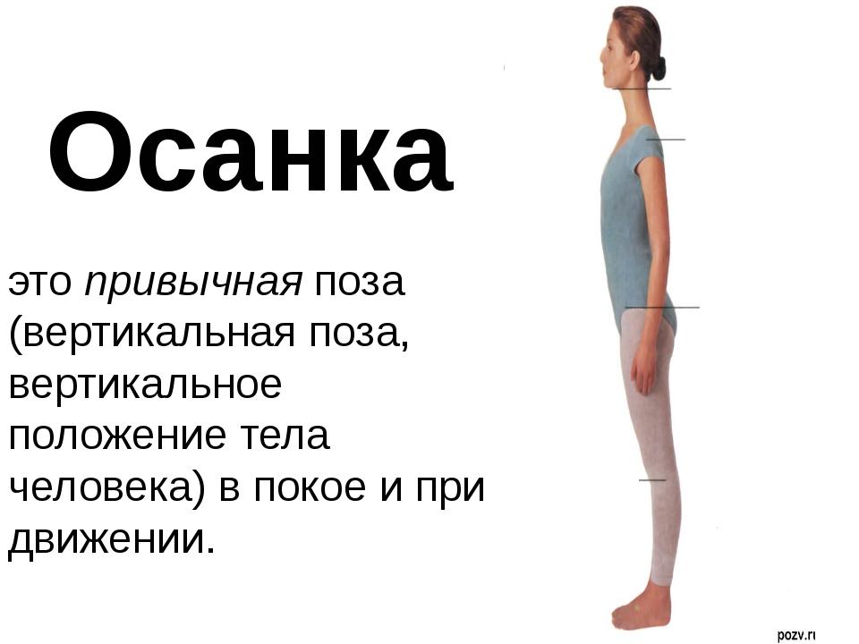 этопривычнаяпоза (вертикальная поза, вертикальное положение тела человека)...