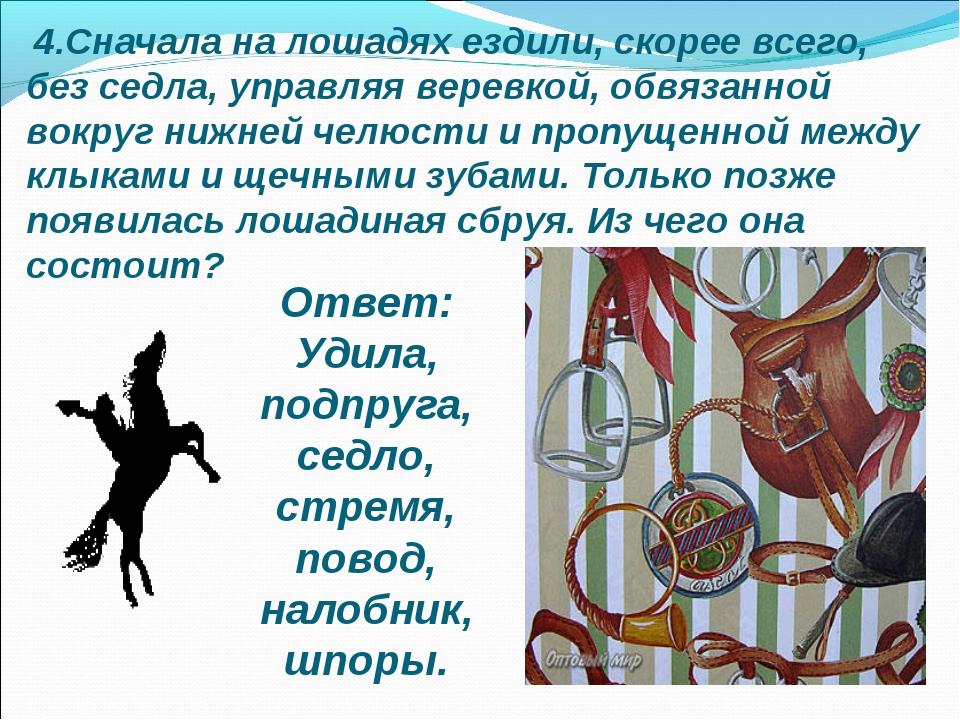 4.Сначала на лошадях ездили, скорее всего, без седла, управляя веревкой, обв...