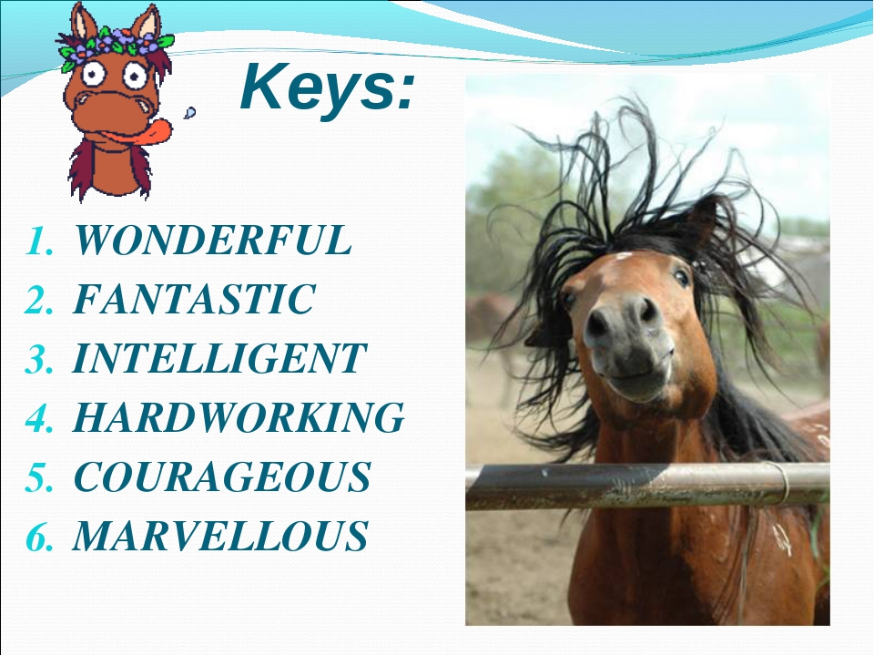 WONDERFUL FANTASTIC INTELLIGENT HARDWORKING COURAGEOUS MARVELLOUS Keys: