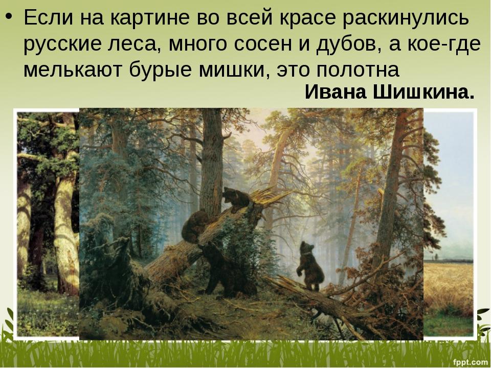 Если накартине вовсей красе раскинулись русские леса, много сосен идубов,...