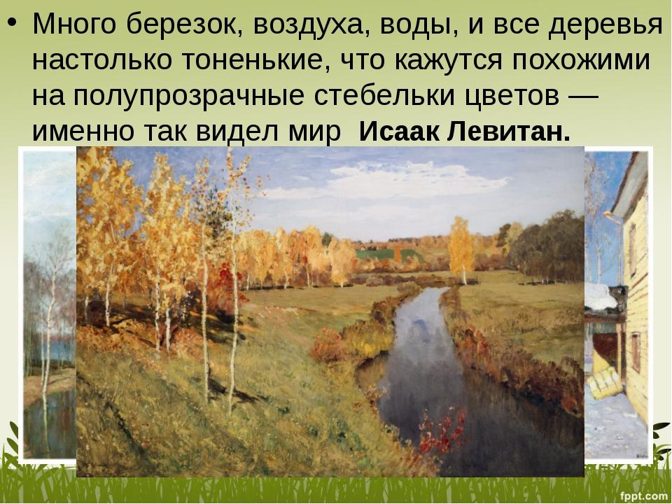 Много березок, воздуха, воды, ивсе деревья настолько тоненькие, что кажутся...