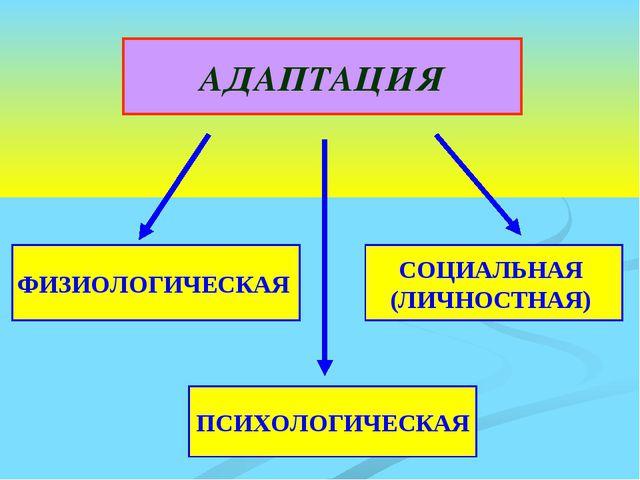 АДАПТАЦИЯ ФИЗИОЛОГИЧЕСКАЯ ПСИХОЛОГИЧЕСКАЯ СОЦИАЛЬНАЯ (ЛИЧНОСТНАЯ)