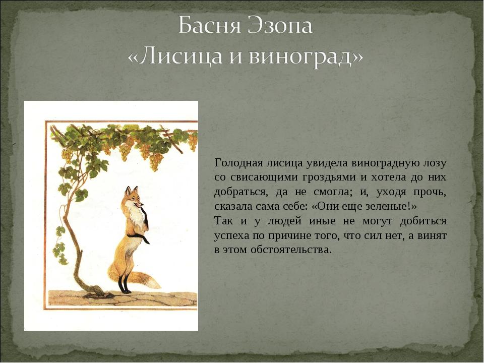 Голодная лисица увидела виноградную лозу со свисающими гроздьями и хотела до...