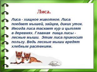 Лиса. Лиса - хищное животное. Лиса поедает мышей, зайцев, диких уток. Иногда