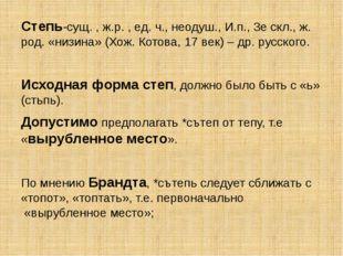 Степь-сущ. , ж.р. , ед. ч., неодуш., И.п., 3е скл., ж. род. «низина» (Хож. Ко