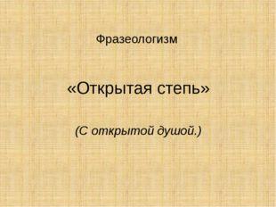 Фразеологизм «Открытая степь» (С открытой душой.)