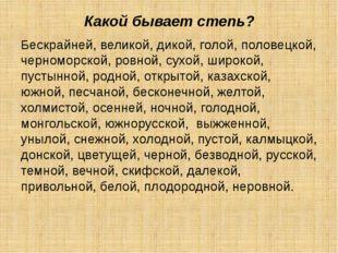 Какой бывает степь? Бескрайней, великой, дикой, голой, половецкой, черноморск