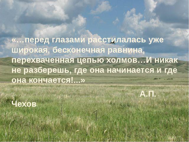 «…перед глазами расстилалась уже широкая, бесконечная равнина, перехваченная...