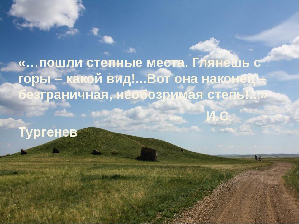«…пошли степные места. Глянешь с горы – какой вид!...Вот она наконец – безгра...