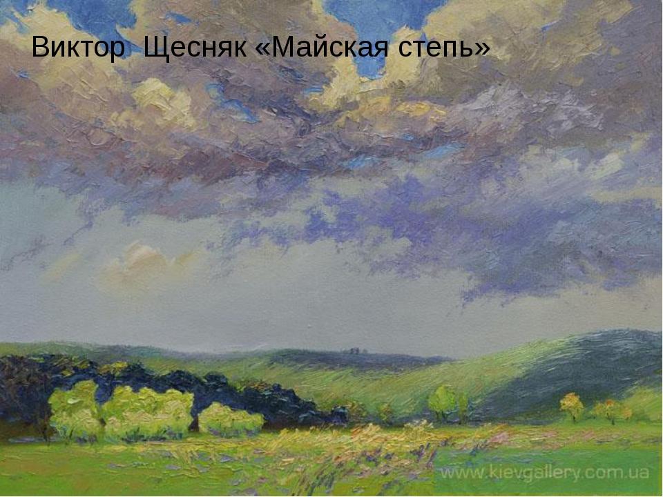 Виктор Щесняк «Майская степь»