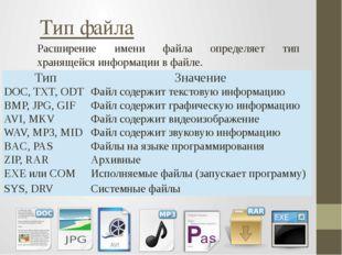 Расширение имени файла определяет тип хранящейся информации в файле. Тип файл